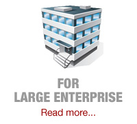 for large enterprise